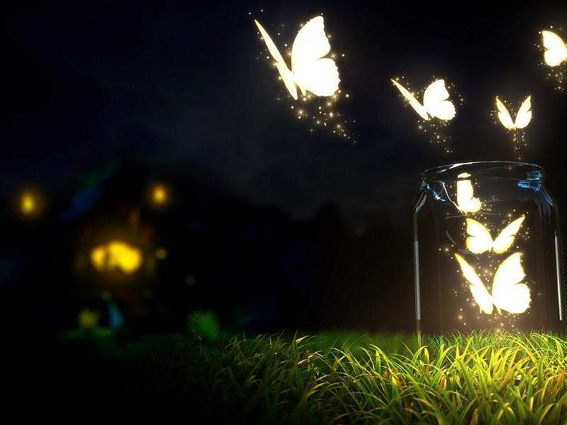 glowing-butterflies-in-a-jar-wallpaper-3583