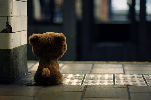 waiting-bear