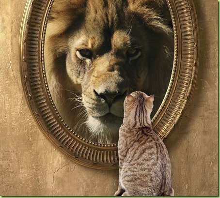 cat-looking-in-mirror-sees-lion_thum