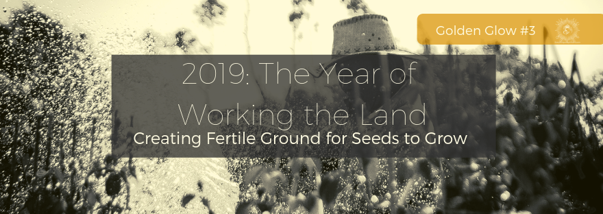 2019: The Year of Working the Land